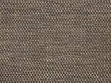 Sunbrella Tailored Taupe (42082-0007)